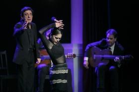 """Jueves Flamencos de la Fundación Cajasol en Sevilla: Arcángel y su espectáculo 'Tablao' (36) • <a style=""""font-size:0.8em;"""" href=""""http://www.flickr.com/photos/129072575@N05/33299139958/"""" target=""""_blank"""">View on Flickr</a>"""