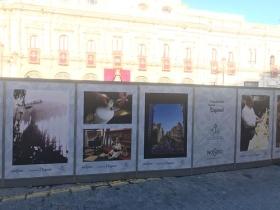 "VI Muestra de fotografías vineladas en la Semana Santa de Sevilla (3) • <a style=""font-size:0.8em;"" href=""http://www.flickr.com/photos/129072575@N05/46872982304/"" target=""_blank"">View on Flickr</a>"
