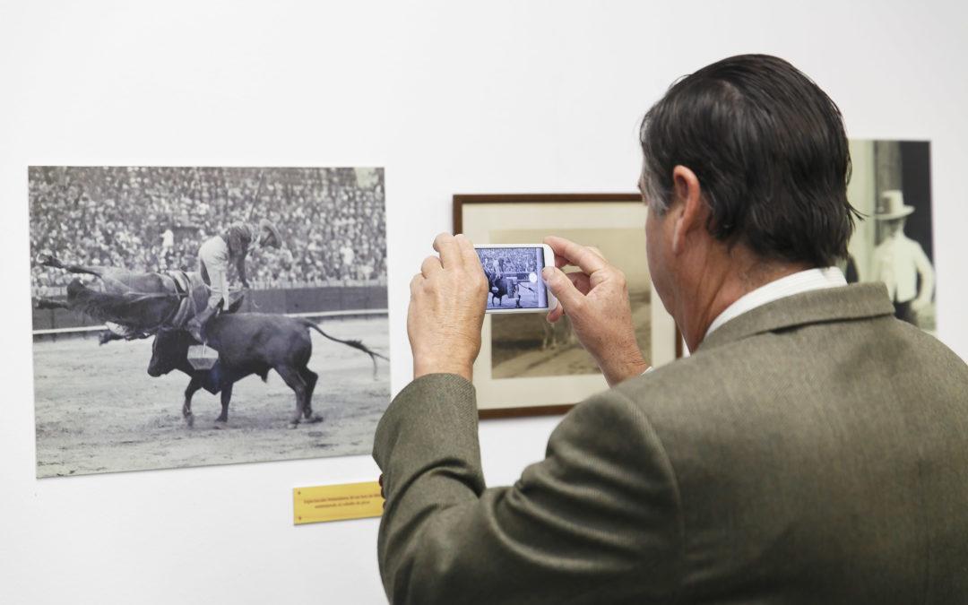 Más de 4.500 personas visitan la exposición 'Miura y Sevilla' en la Fundación Cajasol