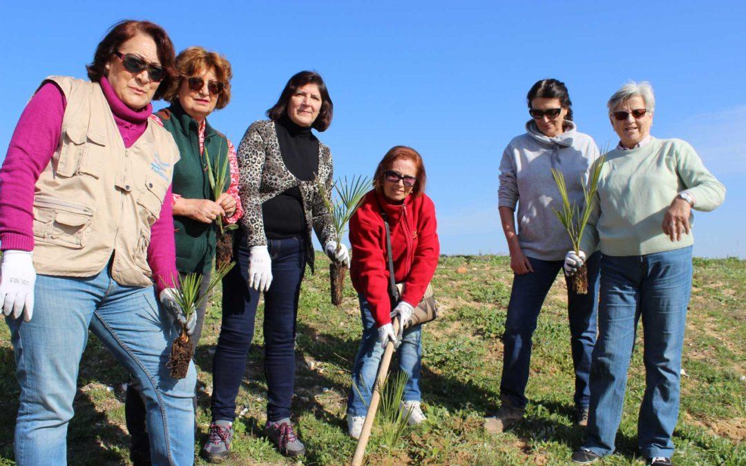 Voluntarios de la Fundación Cajasol reforestan una parcela en Marismas del Odiel con especies autóctonas