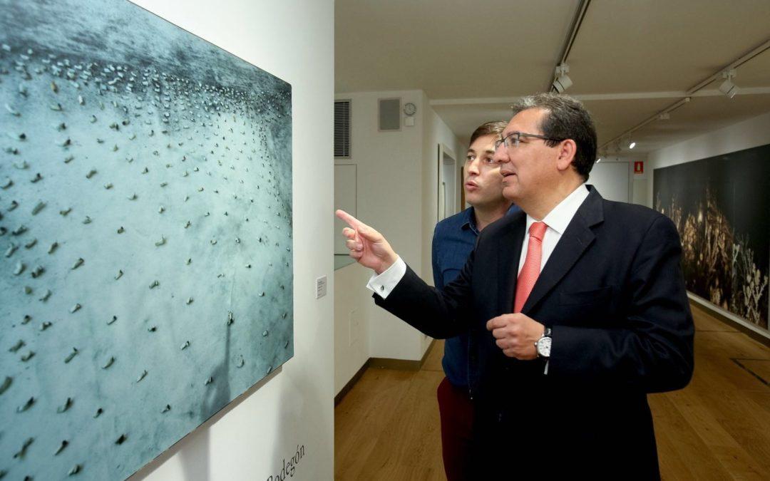 'El impacto de lo viejo' llega a través de las grandes obras de arte de la Fundación Cajasol