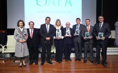 Dinamismo, capacidad de superación y permanente espíritu altruista en las fundaciones y asociaciones galardonadas con los Premios AFA 2018