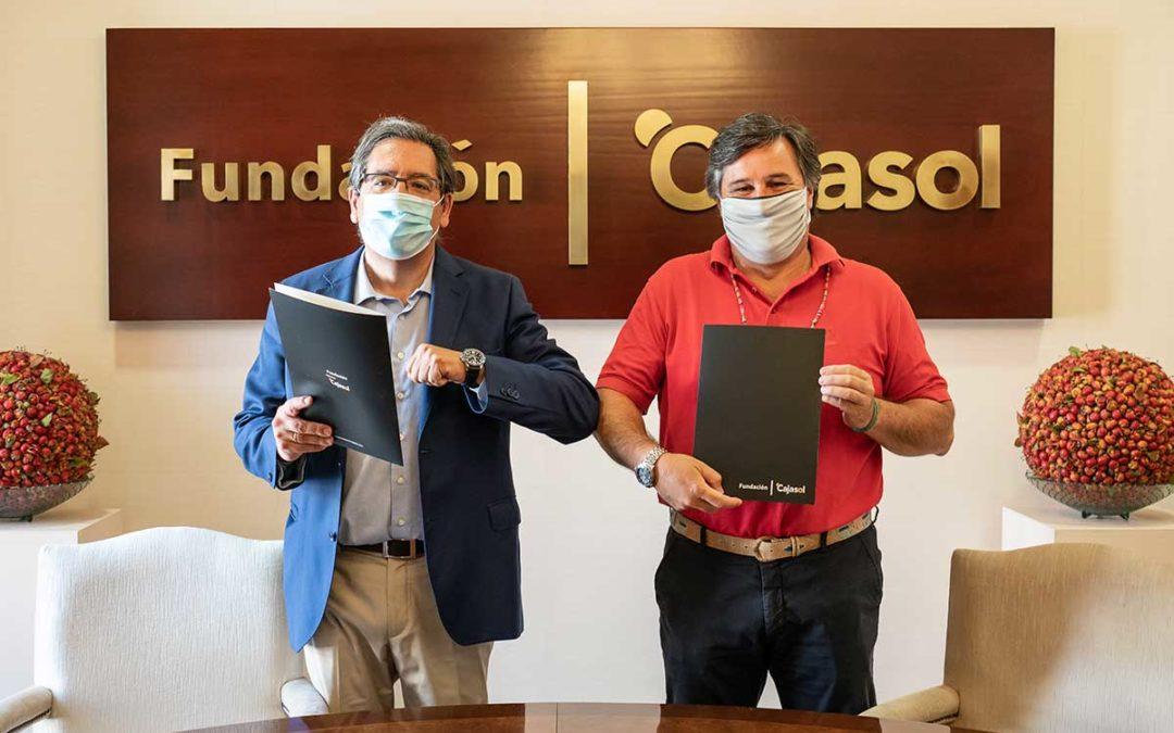 La Fundación Cajasol, colaborador principal del Ciencias Club de Rugby una temporada más